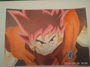 ballpoint drawing dragon ball 13